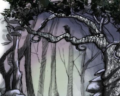 Vistas Enchanted Forest 3