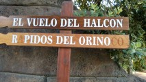 """Pidos del Orino"""